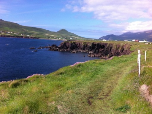 beautiful coastal wilderness in Southern Ireland