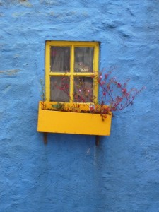 blue and yellow house