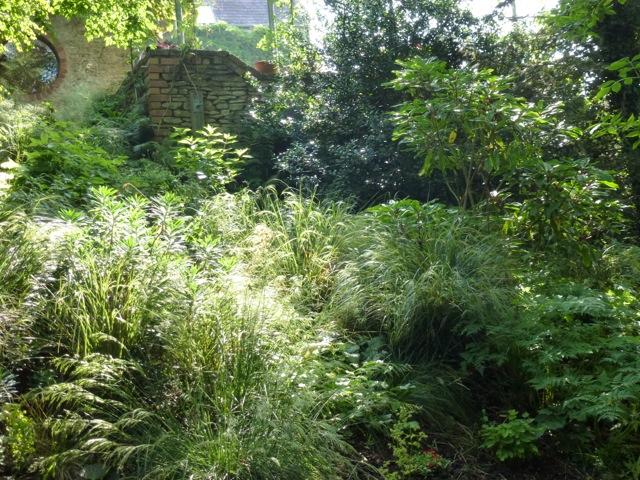 shady areas of the garden planted up with grasses