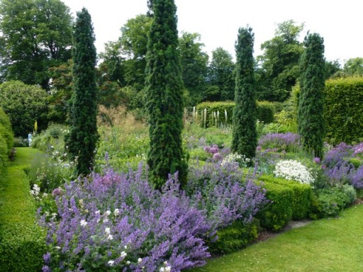 topiary yews and box hedging