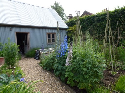 tin shed at bottom of vegetable garden