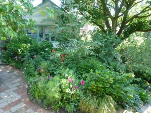 lush green garden border in August