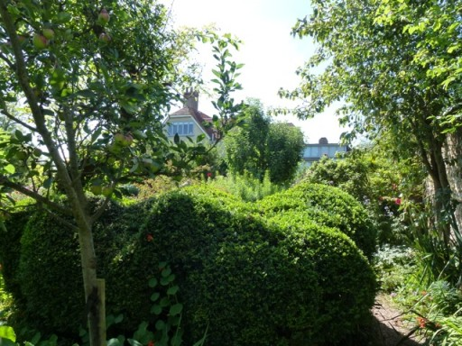 hedge trimmed in organic shapes