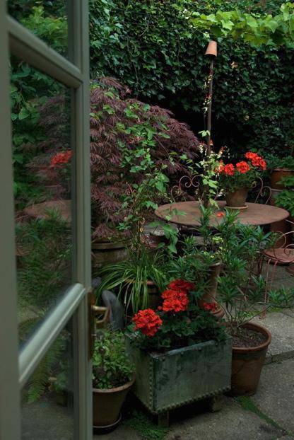 Courtyard garden design for Shady courtyard garden design