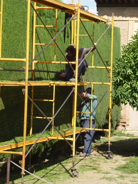 hedge trimming at the Alhambra