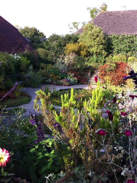 It's late in the season but there's still plenty in flower at Dixter
