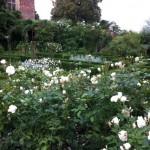 5* Garden Visits