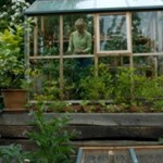 It all about greenhouses