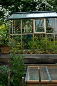 sheltering in a greenhouse from a storm