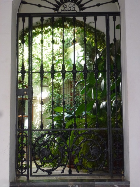 view through doorway of courtyard garden
