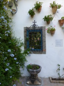 teracotta pots on a white courtyard wall