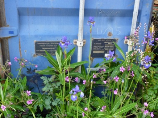 blue container in garden at chelsea flower show