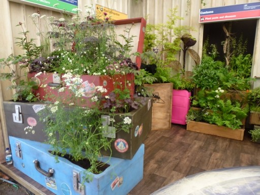 suitcases of plants on stand at chelsea