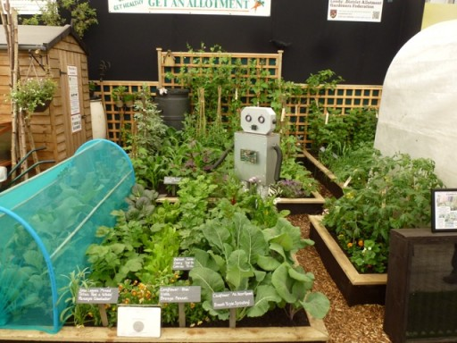 robot in garden on the Leeds district allotment stand