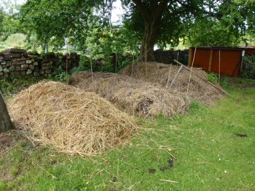 compost heaps laden with straw