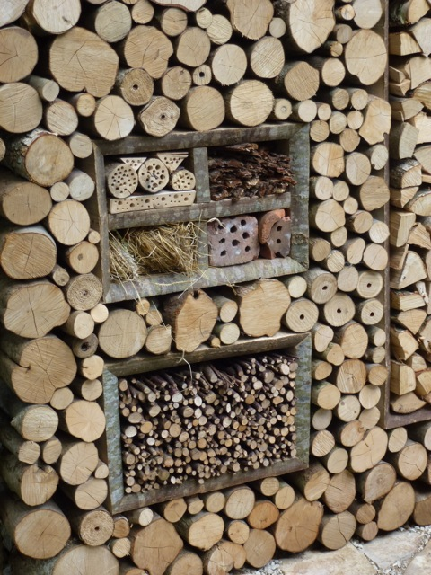 huge log wall containing a insect hotel