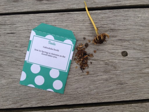 home made seed packet template
