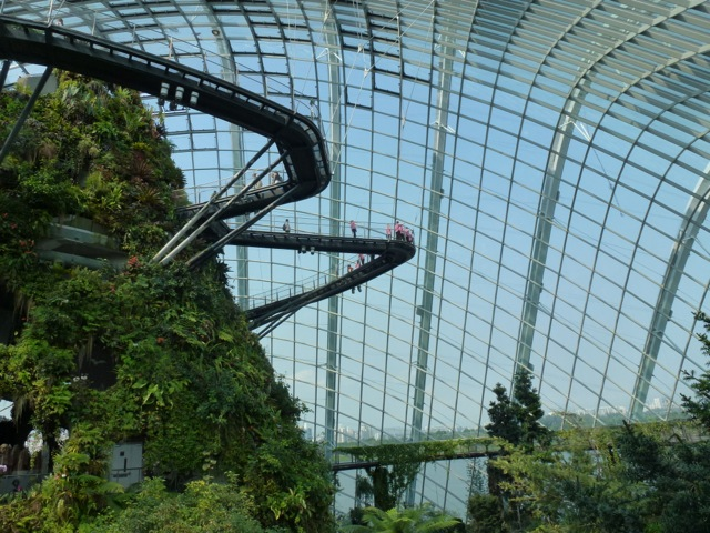 view of the skywalk in one of the Biomes in Singapore