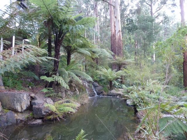 natural looking garden pools