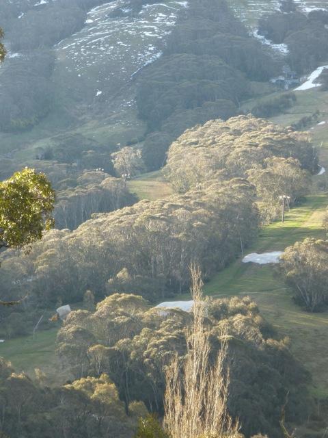 Snowy Mountains of Australia