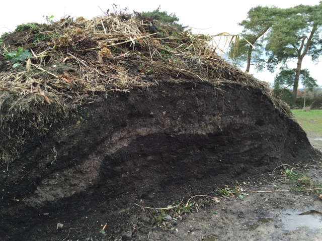 layers within compost heap