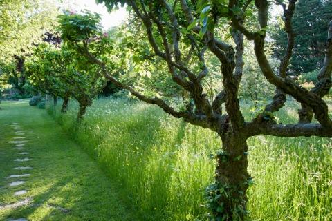 King John's garden in full summer