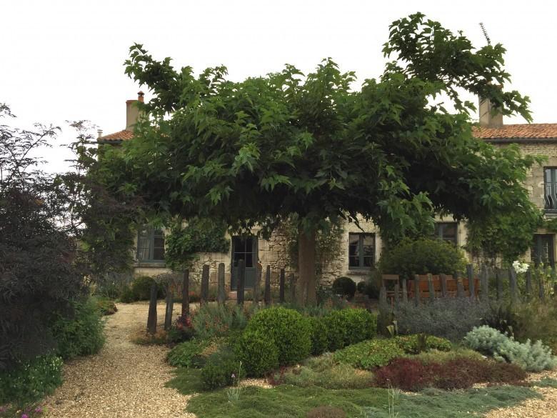 grave garden at Plantagenet Plants