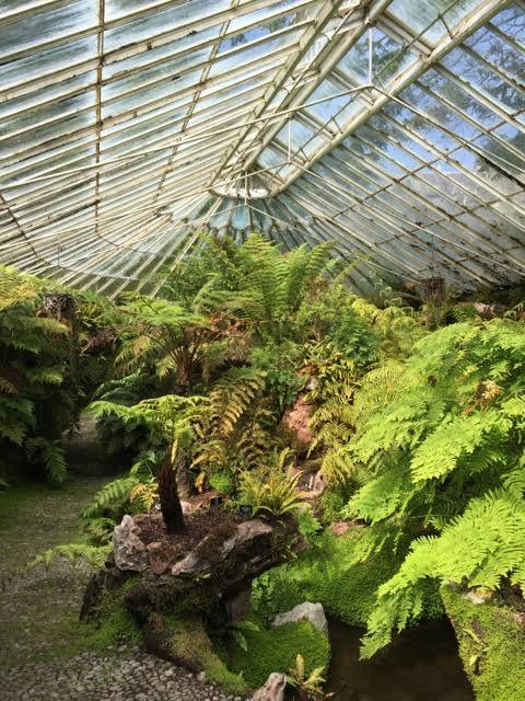 Ascog Hall Victorian Fernery & Garden