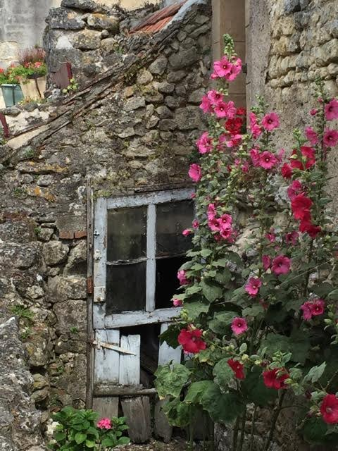 Hollyhocks do wonders to a derelict doorway