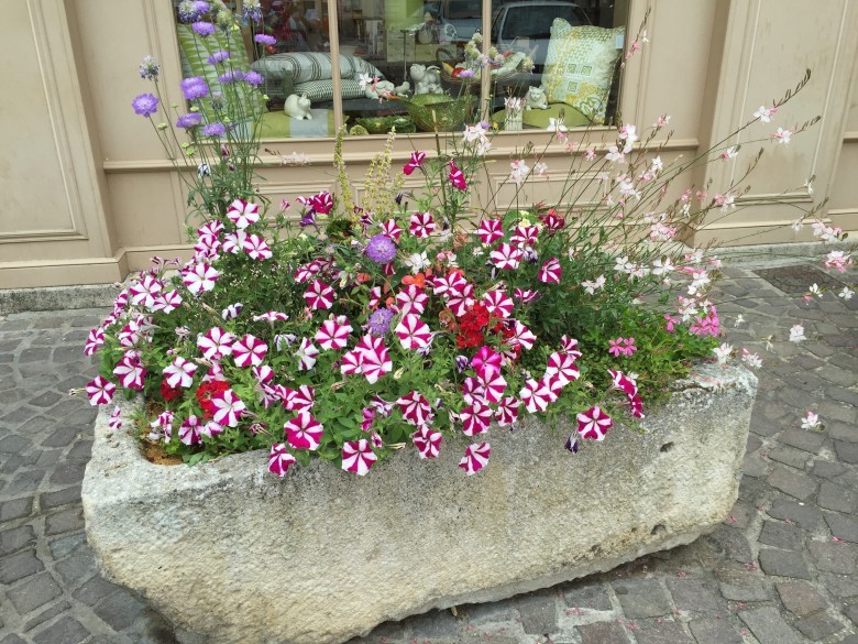 stone planter in full flower