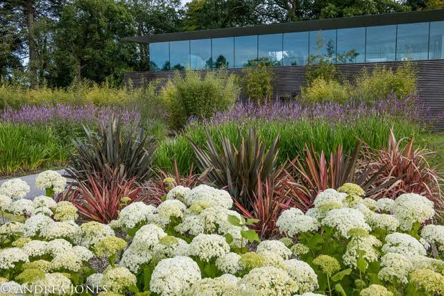 modern planting designs