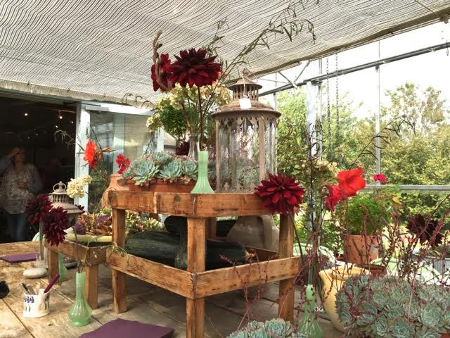 glasshouse display
