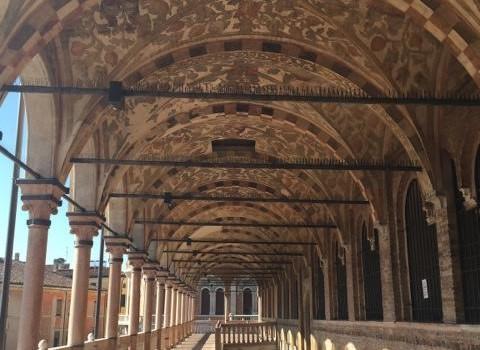 Plants in Art in Venice & Padua
