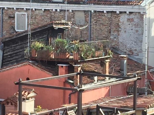 ventian roof garden