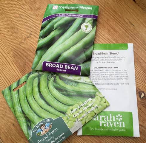 broad bean packets