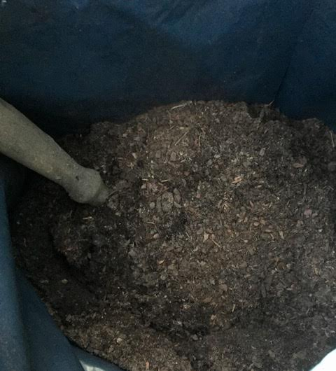 smell the fresh potting compost