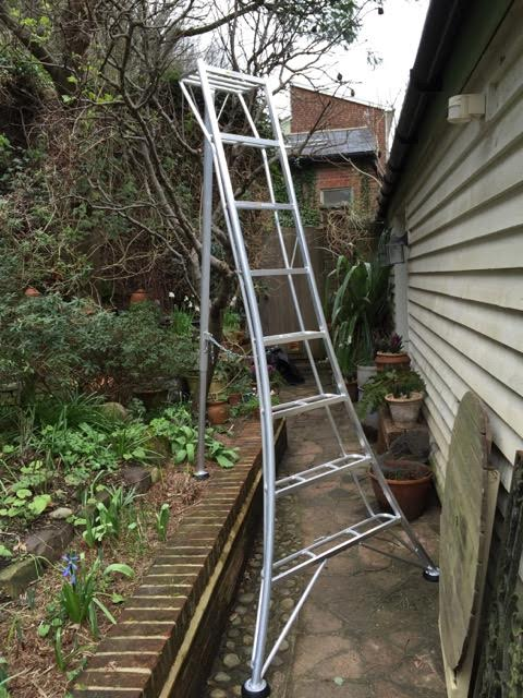hedge cutting ladders