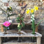 Spring at Sissinghurst