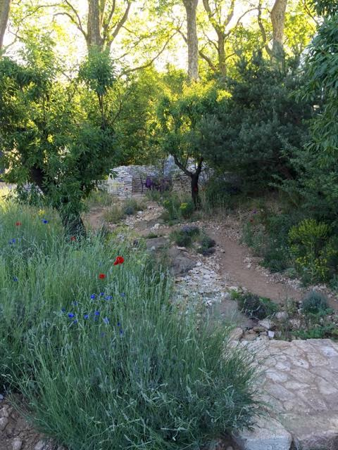 James Basson's L'Occitane Garden in which he has recreated yet another corner of Provence so realistic that I almost expected to hear the cicadas
