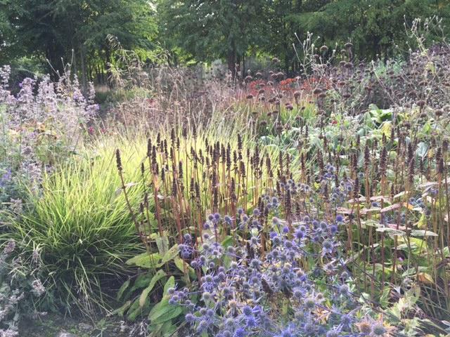 piet-oudolf-planting
