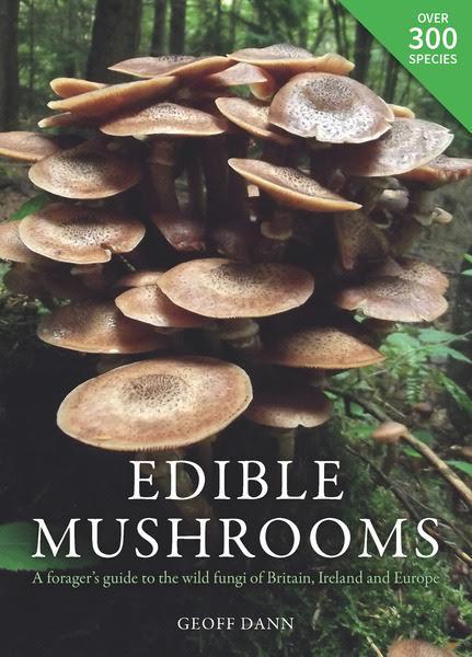 mushroom, book