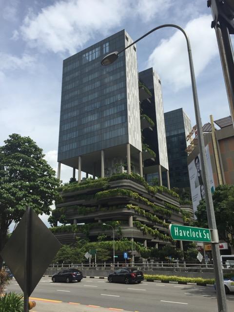Singapore,urban green