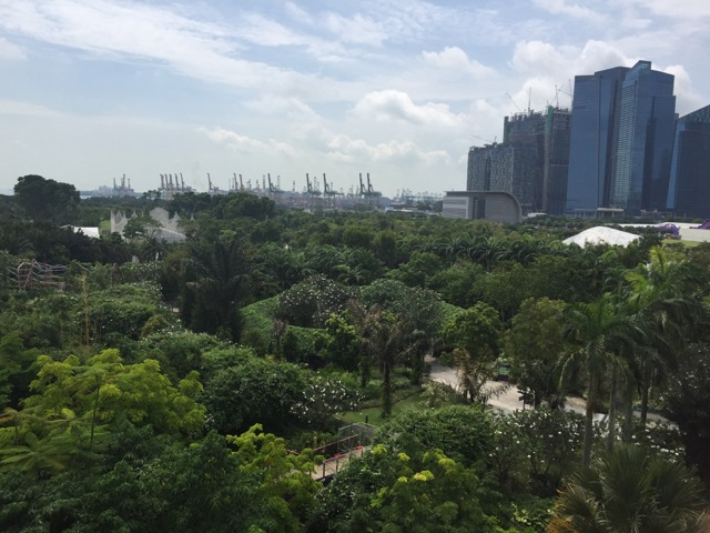 green city,urban greening,singapore