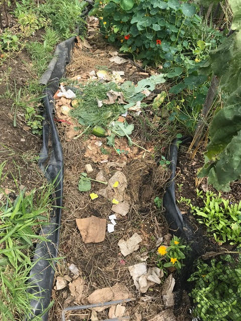 compost, allotment