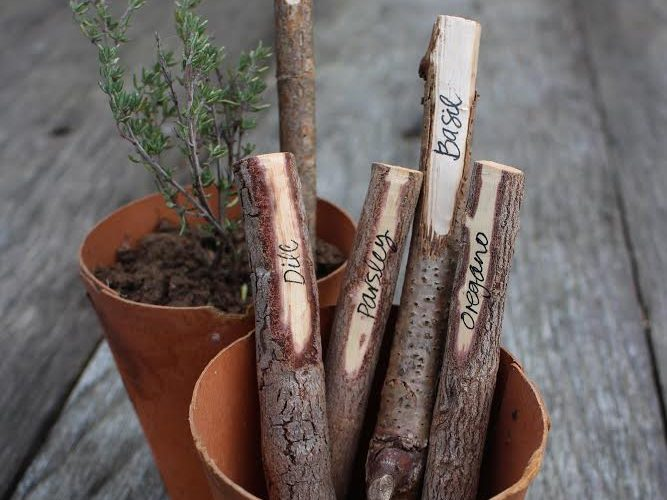 plant labels made from sticks in the garden