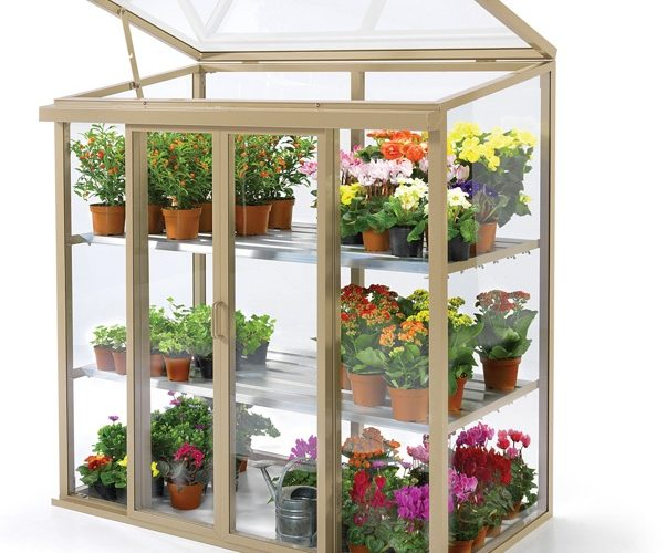 upright coldframe