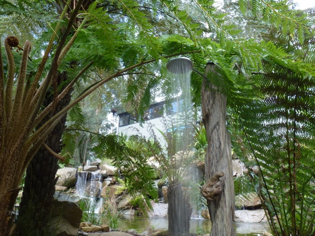 an outdoor shower beneath towering ferns