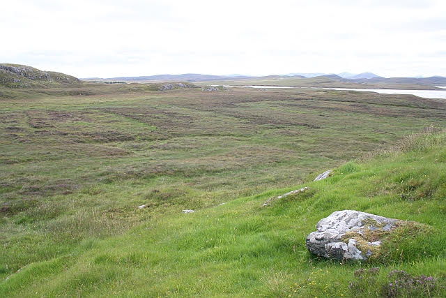 view over peat bog