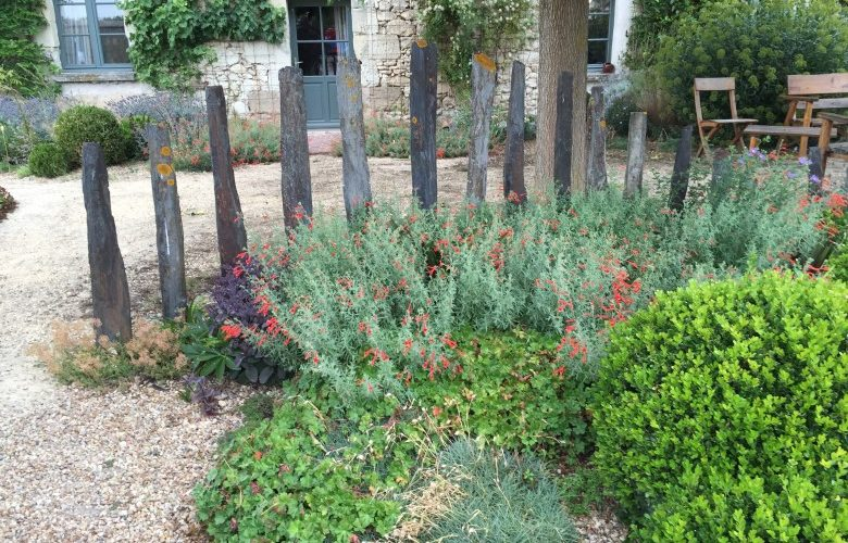 Plant supports for a Cottage Garden | The Enduring Gardener