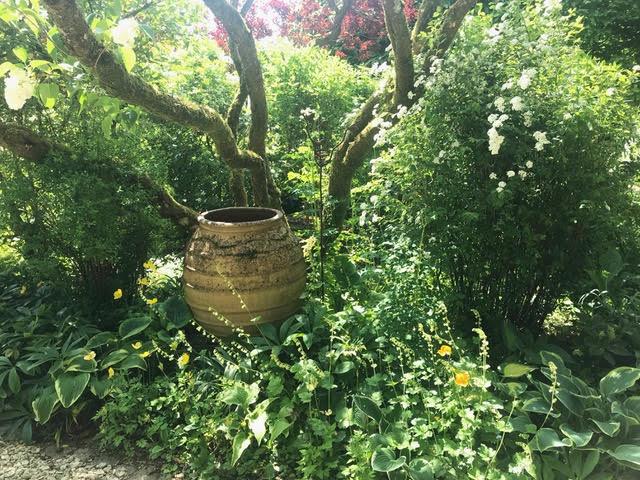 urn,planting